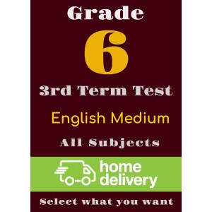 Grade 6 - 3rd Term Past Papers - English (printed)
